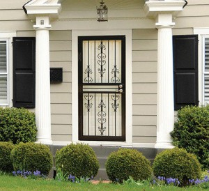 Larson Garden View Security Door