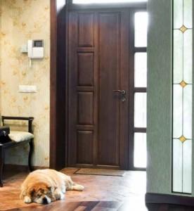 Lemieux Exterior Wood Panel Custom Door with Sidelight