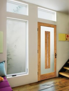 JELD-WEN Exterior Wood Contemporary Door with Frosted Glass Panel